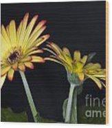 Yellow And Orange Gerbera 2 Wood Print