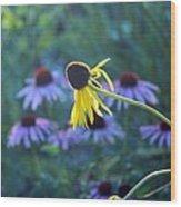 Yellow  And Purple Coneflowers Wood Print