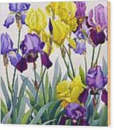 Yellow And Purple Irises Wood Print