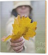 Yellow Autumn Leaf Wood Print