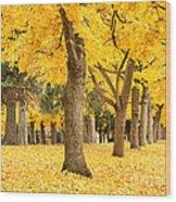 Yellow Autumn Wonderland Wood Print