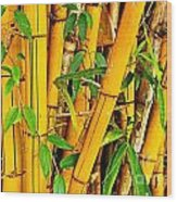 Yellow Bamboo Wood Print