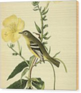 Yellow-bellied Flycatcher Wood Print by Philip Ralley