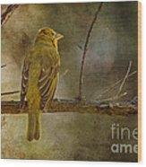 Yellow Bird Resting Wood Print by Pam Vick