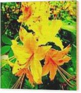 Yellow Bliss Wood Print