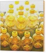 Yellow Bottle Wood Print