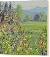 Yellow Broom Spring Wood Print