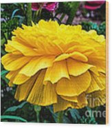 Yellow By Nature Wood Print