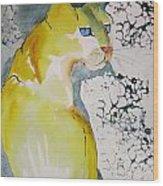 Yellow Cat Wood Print