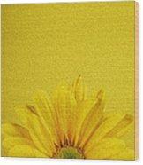 Yellow Chrysanthemum Wood Print
