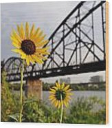 Yellow Cone Flowers And Bridge Wood Print
