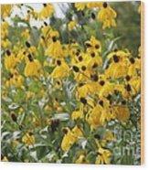 Yellow Cone Flowers Wood Print
