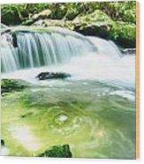 Yellow Creek Falls Great Smoky Mountains Wood Print