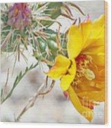 Yellow Desert Flower Wood Print