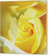 Yellow Diamond Rose Palm Springs Wood Print