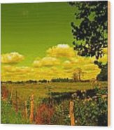Yellow Fencerow Wood Print