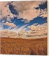 Yellow Field Dramatic Sky Wood Print