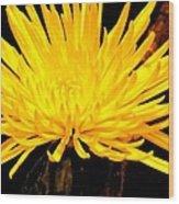 Yellow Flash Wood Print
