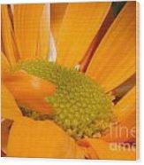 Yellow Flower II Wood Print