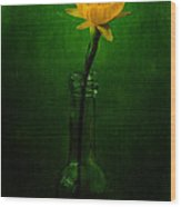 Yellow Flower In A Bottle I Wood Print