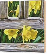 Yellow Flowers By The Bench Wood Print