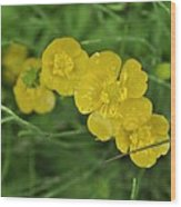 Yellow Glow Wood Print