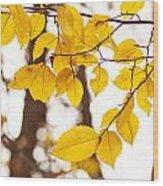 Yellow Happiness Wood Print