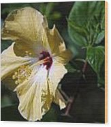 Yellow Hawaiian Hibiscus Wood Print