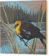 Yellow Headed Black Bird Wood Print