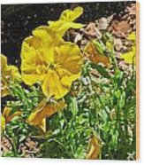 Yellow Flower In The Sun Wood Print