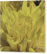 Yellow It Is Wood Print
