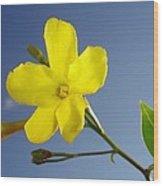 Yellow Jasmine Flower And Bud Against Blue Sky Wood Print