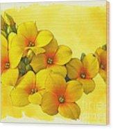 Yellow Kalanchoe - Succulent Sunshine Wood Print