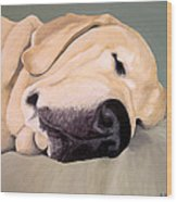 Yellow Lab - A Head Pillow Is Nice Wood Print