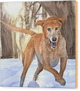 Yellow Lab Dog In Snow Watercolor Portrait Wood Print