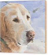 Yellow Lab In Snow Watercolor Portrait Wood Print