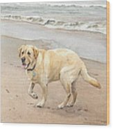 Yellow Lab On Beach Watercolor Portrait Wood Print