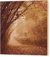 Yellow Leaf Road Wood Print