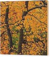 Yellow Leaves Wood Print