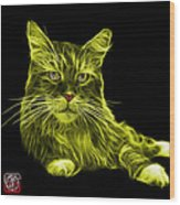 Yellow Maine Coon Cat - 3926 - Bb Wood Print