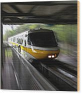 Yellow Monorail Entering The Station 02 Wood Print