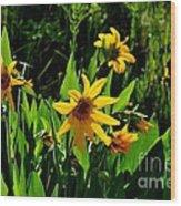 Yellow Mountain Flowers Wood Print
