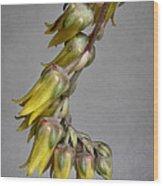 Yellow On Gray Wood Print