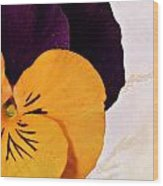 Yellow Purple Pansy Wood Print