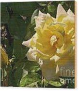 Yellow Rose And Bud Wood Print
