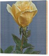 Yellow Rose Greeting Card Wood Print