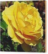 Yellow Rose IIi Wood Print