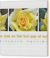 Yellow Rose On The First Day Of Summer Wood Print