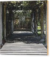 Yellow Rose Pergola Wood Print