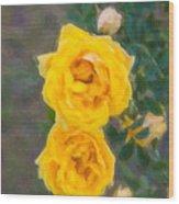 Yellow Roses On A Bush Wood Print